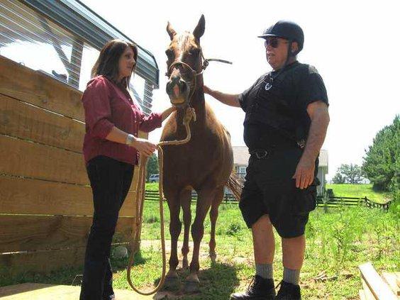 2 Horse Rescue pic