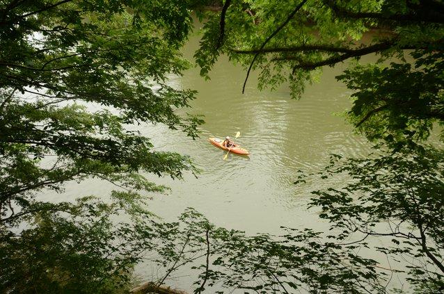 GRN Paddle Georgia 2017