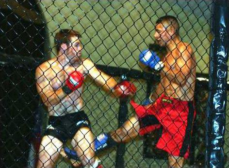 -I-Ultimate Fighting pic