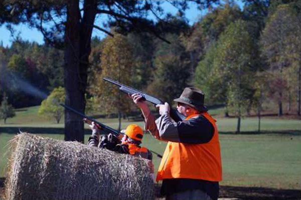 Pheasant Shoot pic
