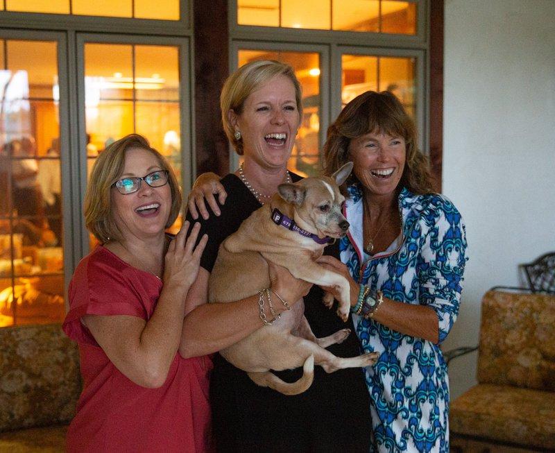 I-Senior dogs pic 3.jpg