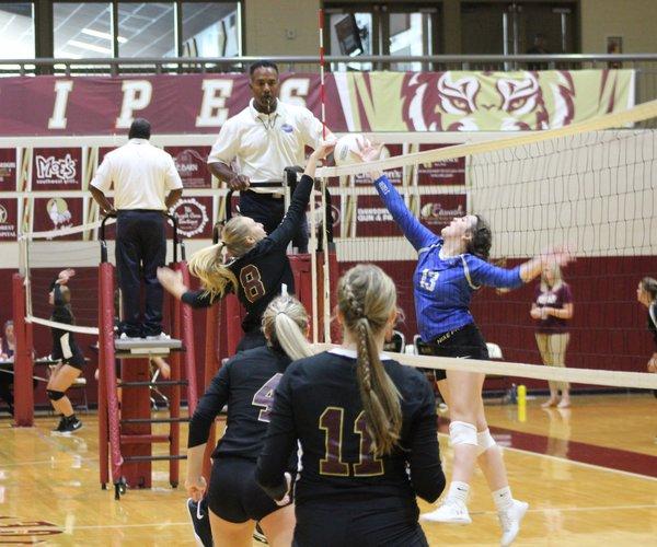 Emma Pelfrey Volleyball